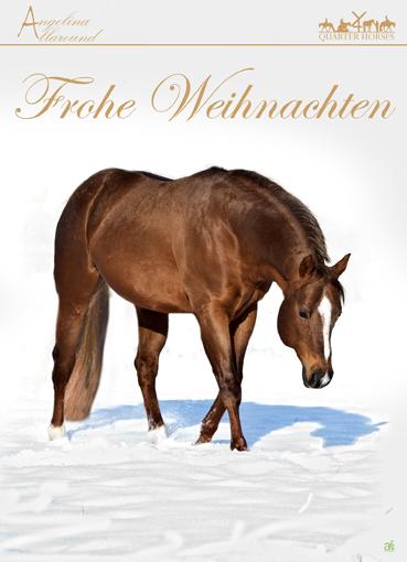 Frohe Weihnachten Pferd.4 You Quarter Horses
